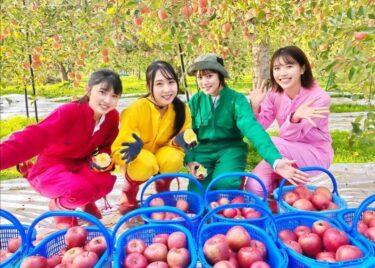 りんご娘で一番かわいいメンバーは誰?とき/王林/ジョナゴールド/彩香 インスタ写真や身長を調べてみた。